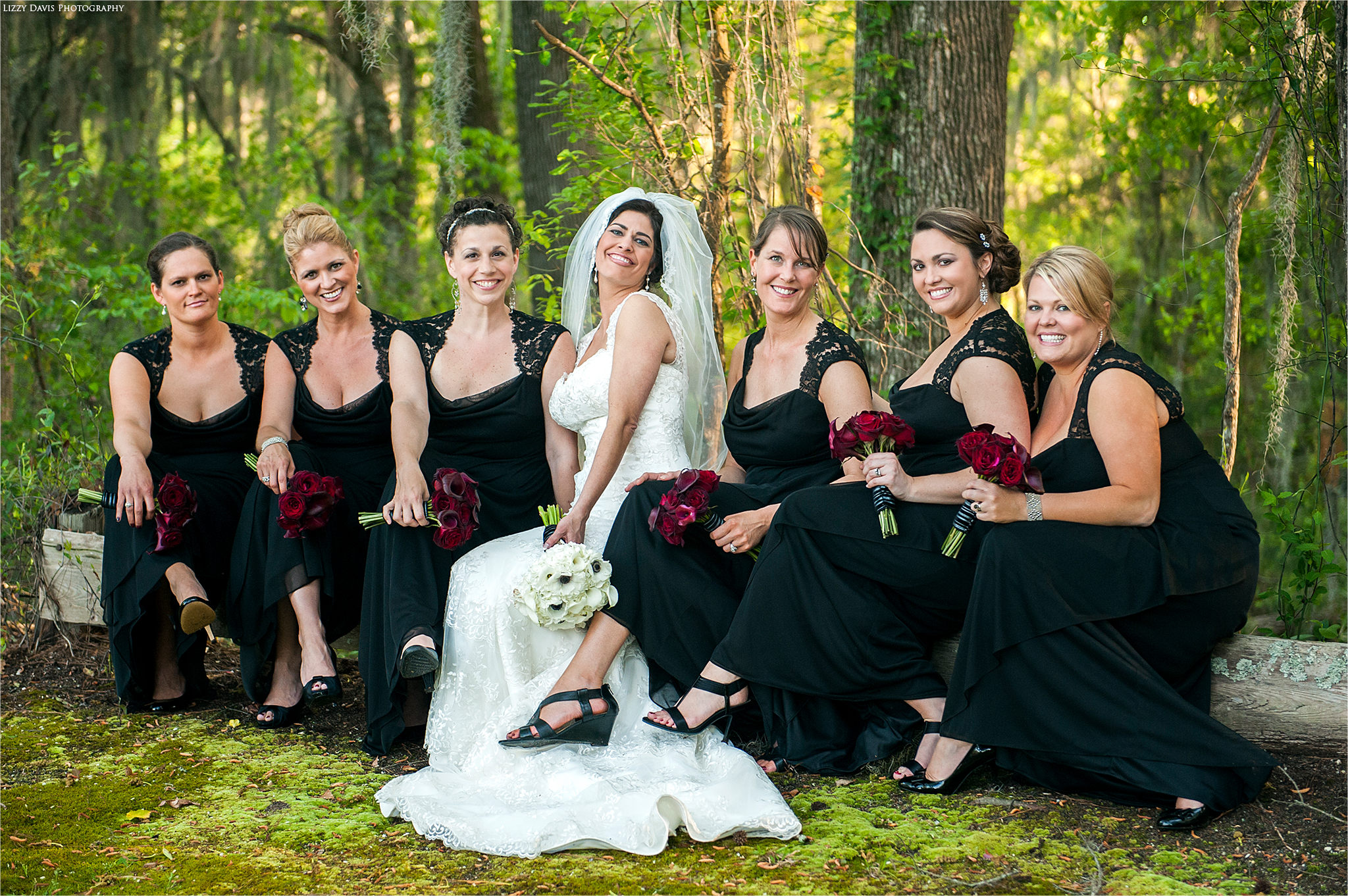Elegant photo of a bride with her bridal party.